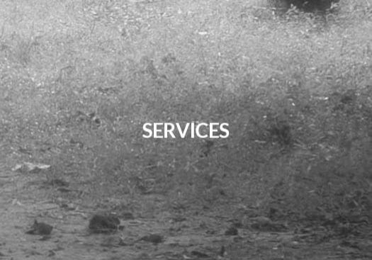 F-Services